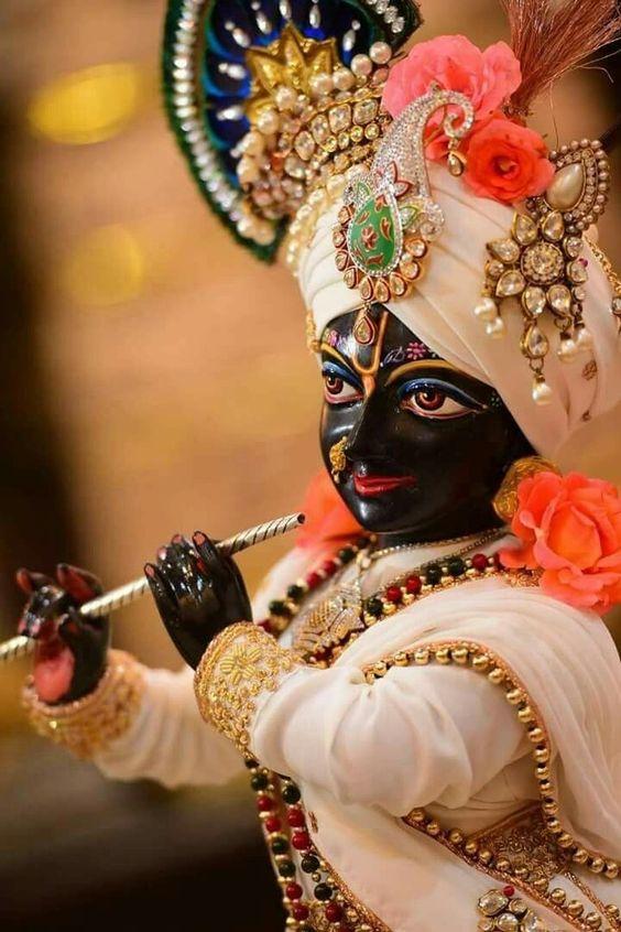Laddu Gopal Shri Krishna Gopala Ji